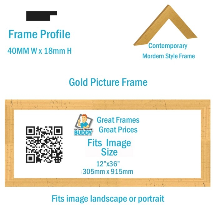 "12""X36"" Panoramic Picture Frame - Picture Frames Buddy in 12 X 36 Frame"