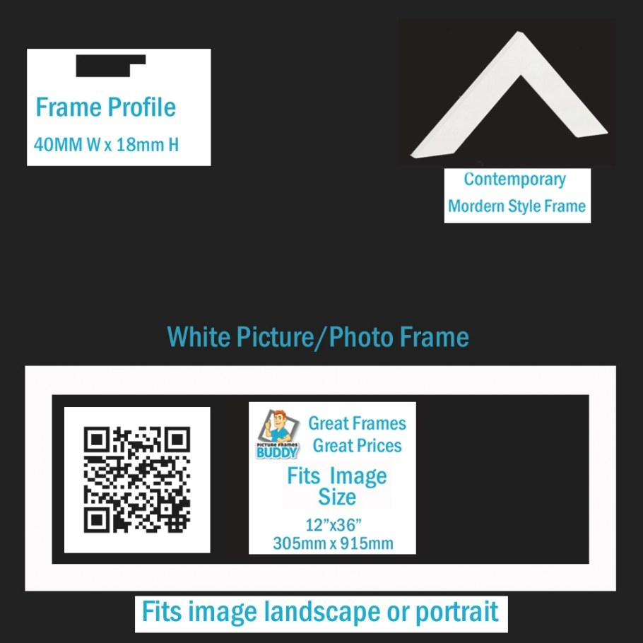 "12""X36"" Panoramic Picture Frame - Picture Frames Buddy pertaining to 12 X 36 Frame"