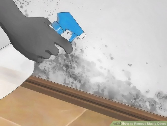 5 Ways To Remove Musty Odors - Wikihow within How Do You Remove Black Mold From Rubber