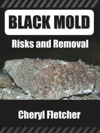 54 Best Black Mold Images On Pinterest | Mold Removal regarding How Do You Remove Black Mold From Rubber