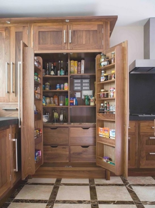 Freestanding Pantry Cabinets – Kitchen Storage And pertaining to Pantry Ideas For Kitchens