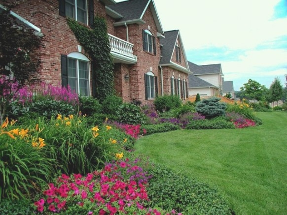 Front Yard Planting Ideas - Traditional - Landscape - New within Front Yard Landscaping Ideas