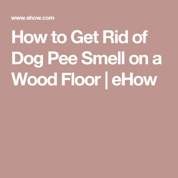 How To Get Rid Of Dog Pee Smell On A Wood Floor | Dog Pee with Whole House Smells Like Dog Urine