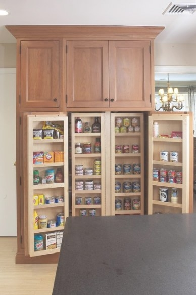 Interior Of Large Pantry Cabinet - Eclectic - Kitchen within Kitchen Pantry Storage Cabinet
