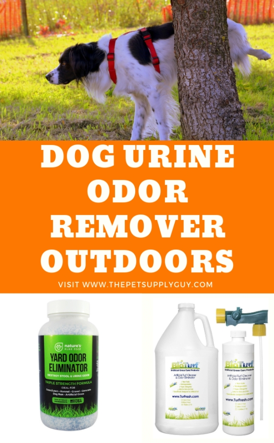 Neutralize Dog Urine Odor In Yard - Rona Mantar for Whole House Smells Like Dog Urine
