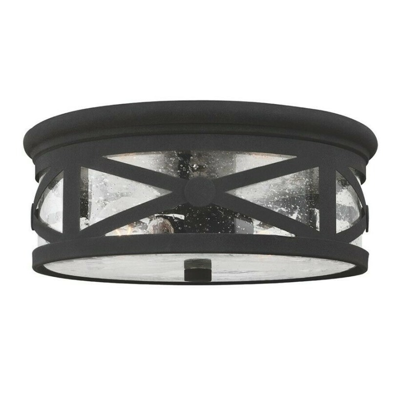Sea Gull Lighting Lakeview Two Light Outdoor Ceiling Flush for Flush Mount Ceiling Lights