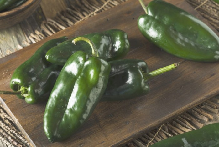 Tiburon Poblano Pepper | Premium Garden Seeds | Hoss Tools for 20-20-20 Fertilizer