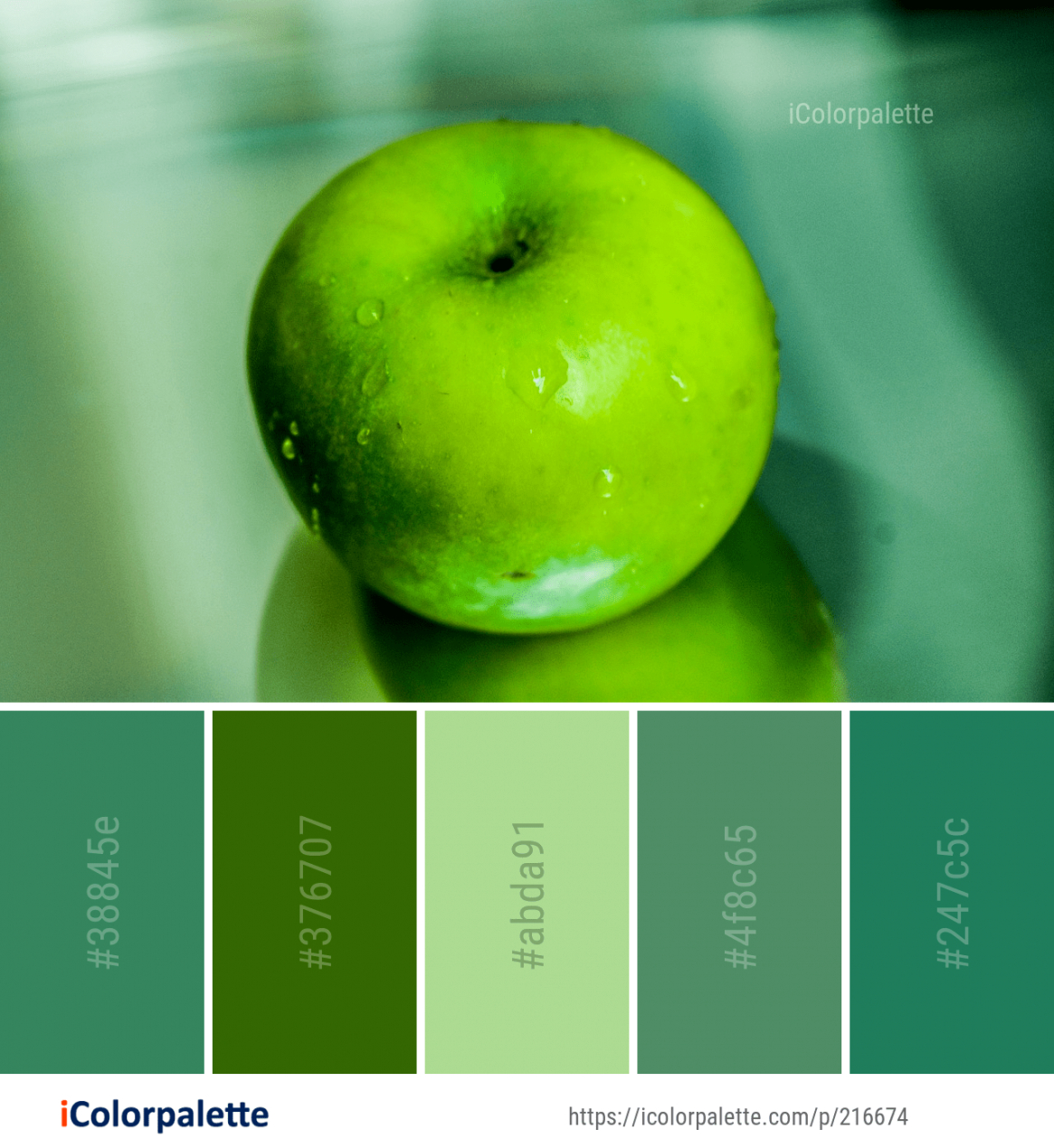 Color Palette Ideas #icolorpalette #colors #inspiration intended for Inspirational Color Palette Green