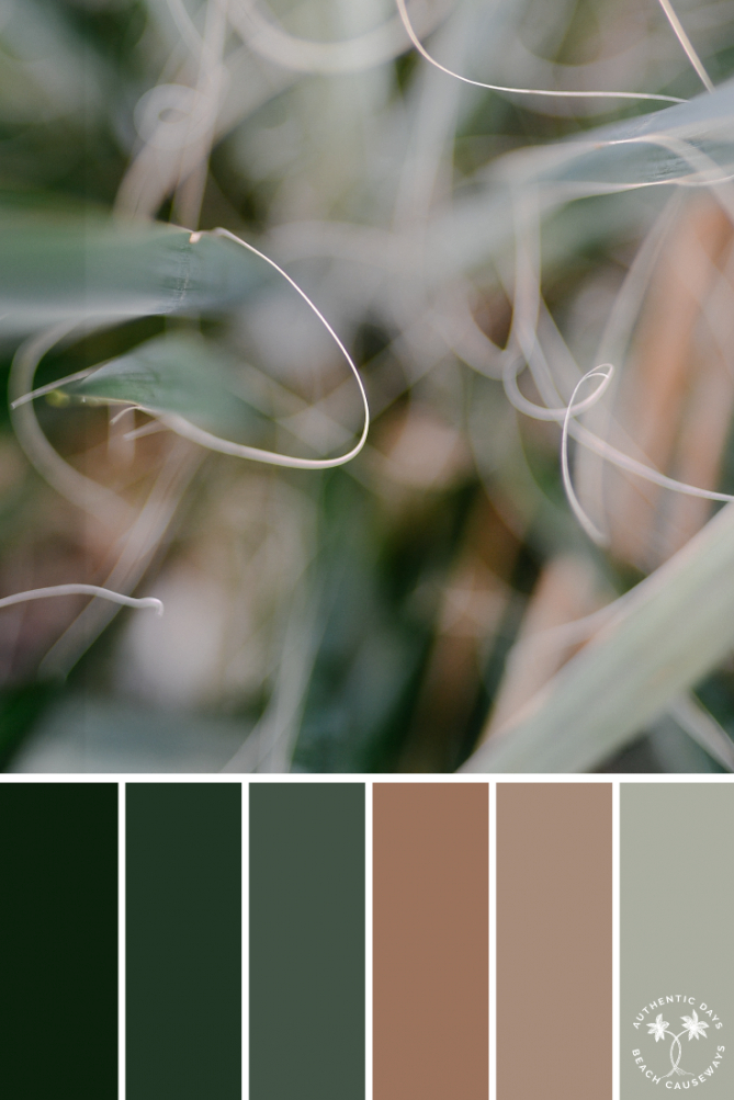 Green & Neutral Color Palette | Color Inspiration | Color intended for Inspirational Color Palette Green
