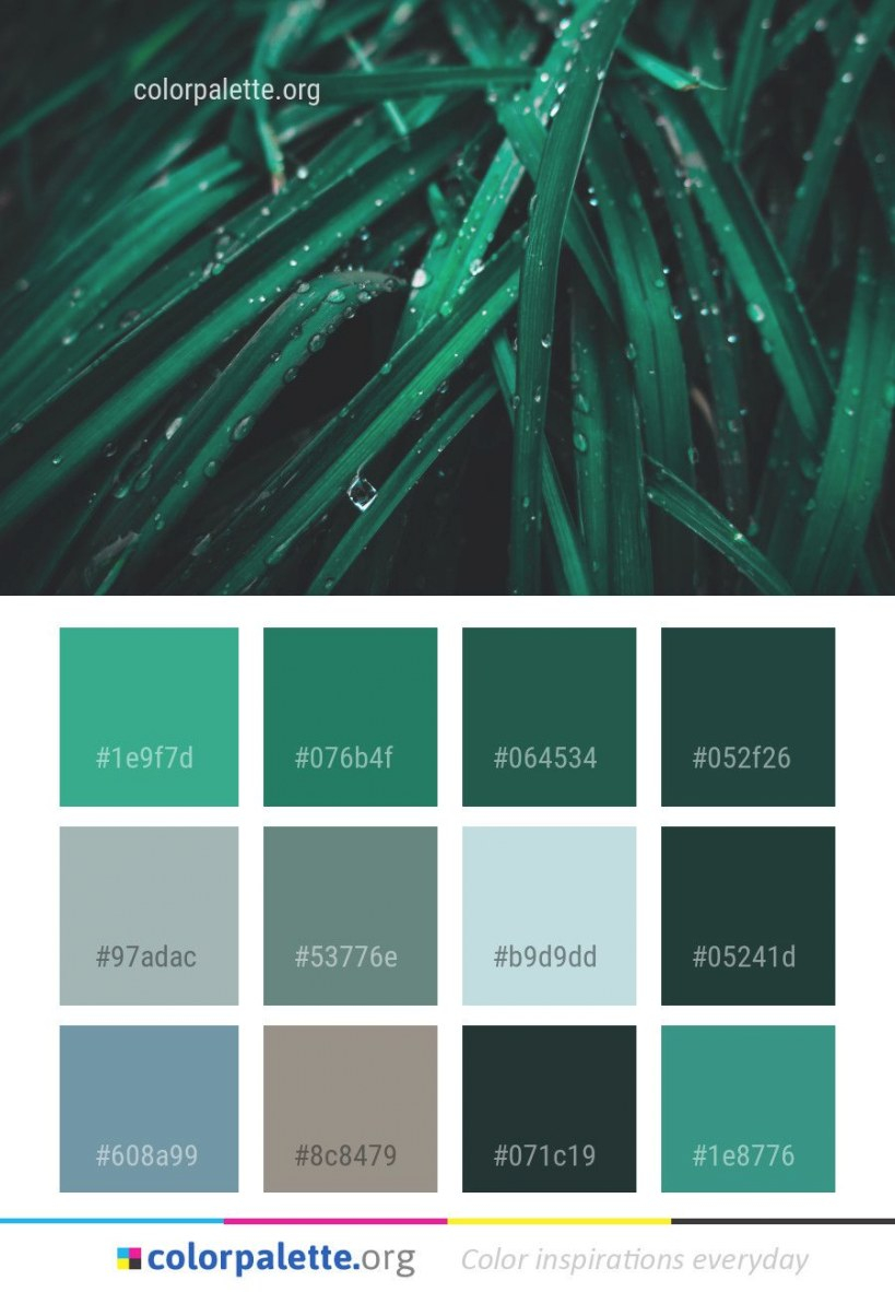 Green Water Close Up Color Palette #colors #inspiration regarding Inspirational Color Palette Green