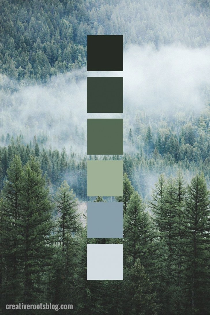 Muted Forest Green Color Palette Idea | Green Colour Palette in Inspirational Color Palette Green