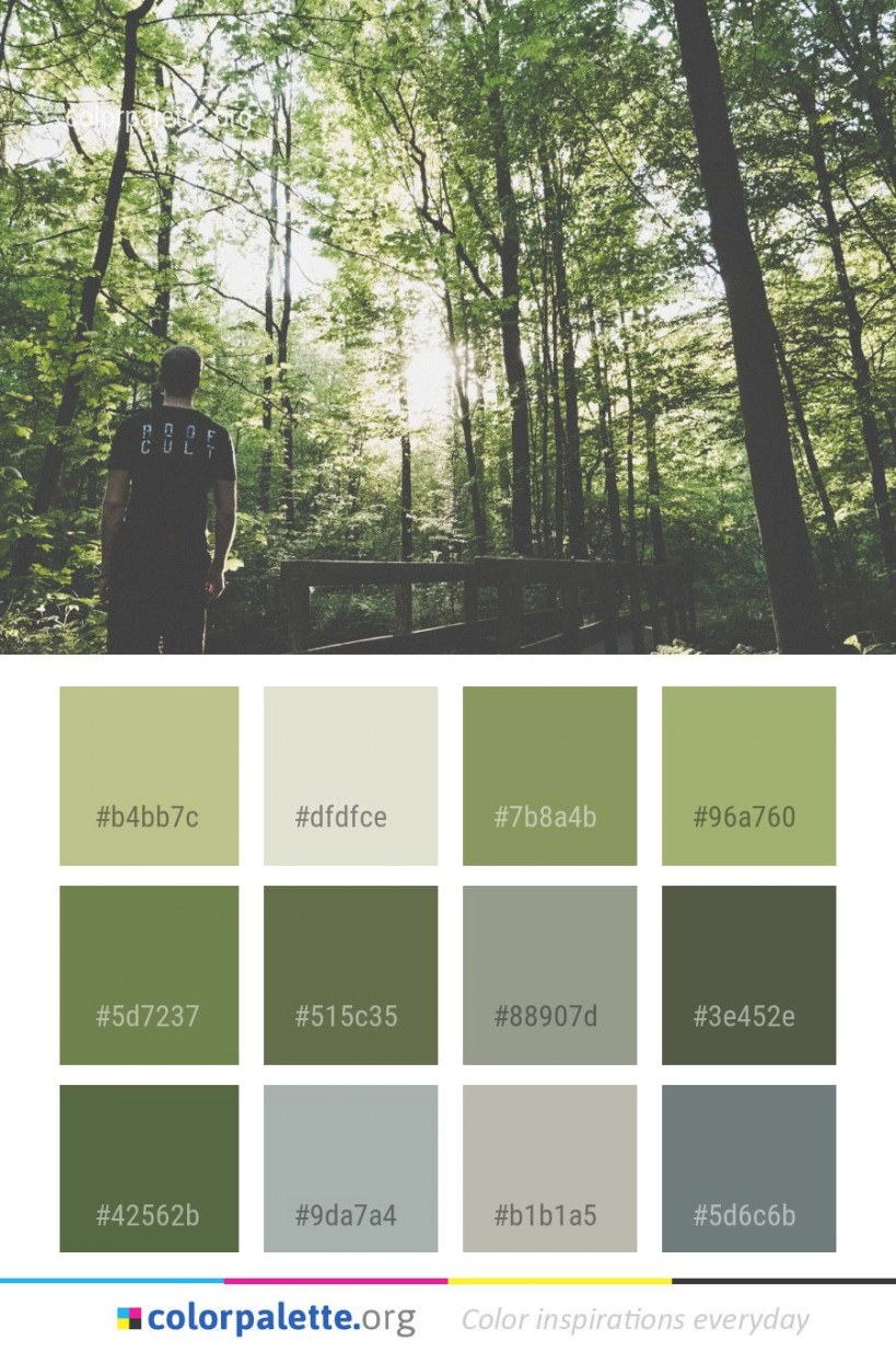 Nature Tree Green Color Palette #colors #inspiration inside Inspirational Color Palette Green