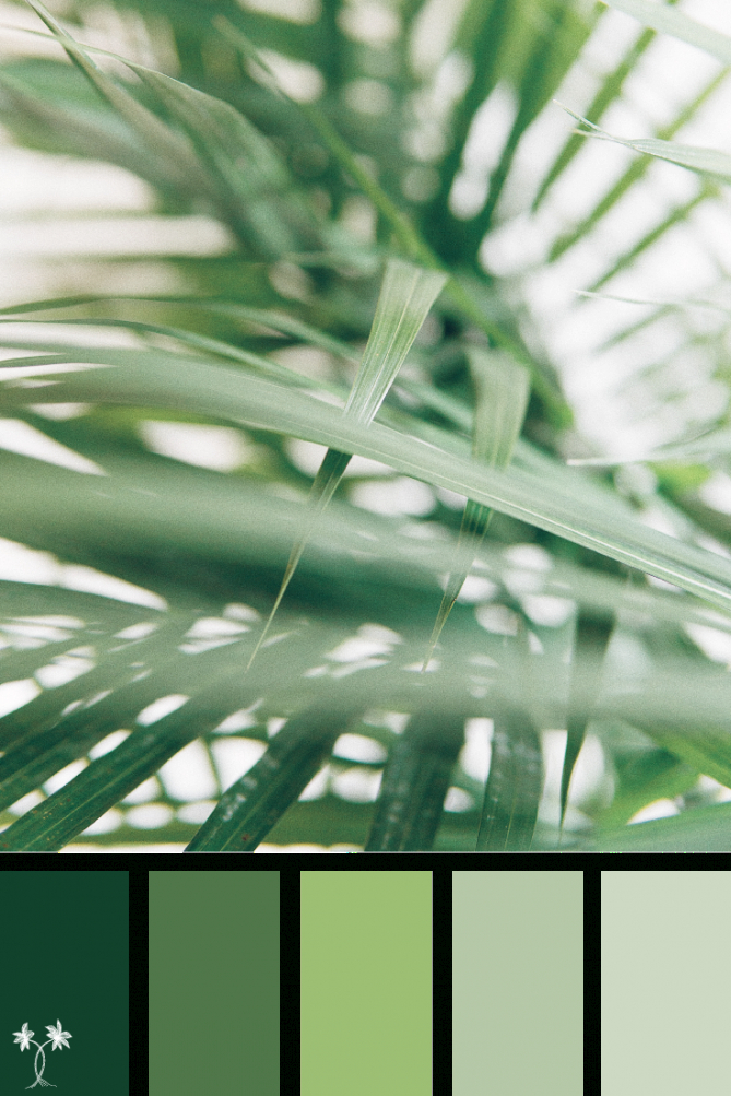 Palm Leaves | Shades Of Green Color Palette Inspiration regarding Inspirational Color Palette Green
